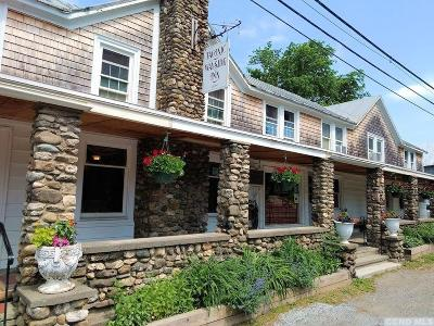 Columbia County Multi Family Home For Sale: 108 Route 344