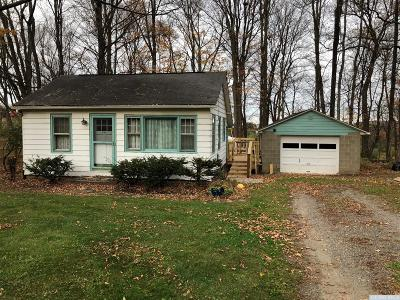 Columbia County Single Family Home For Sale: 301 County Route 14