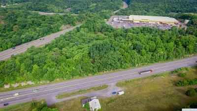 Greene County Residential Lots & Land For Sale: Route 23b