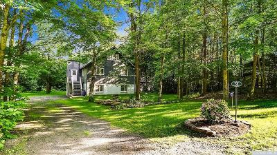 Windham Single Family Home For Sale: 58 Chase Drive