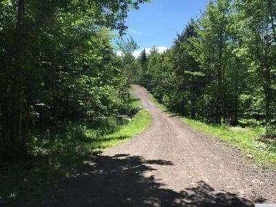 Jewett Residential Lots & Land For Sale: 1341 Route 296