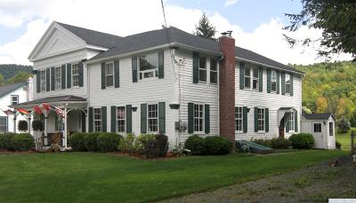 Prattsville Multi Family Home For Sale: 40 Route 7