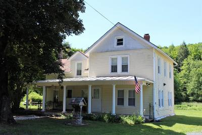 Windham NY Single Family Home For Sale: $174,900