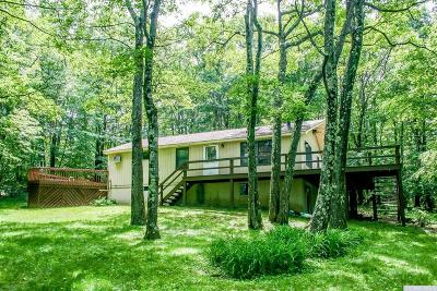 Columbia County Single Family Home For Sale: 557 Route 21
