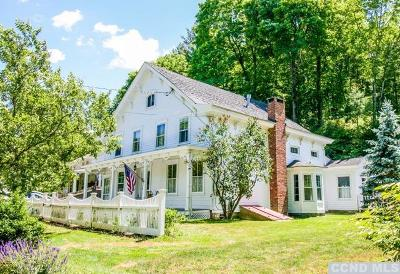 Columbia County Single Family Home For Sale: 3658 Route 66