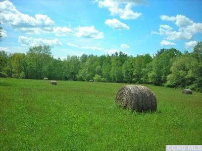 Dutchess County Residential Lots & Land For Sale: Skunks Misery Road