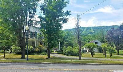 Windham Single Family Home For Sale: 5449 State Route 23