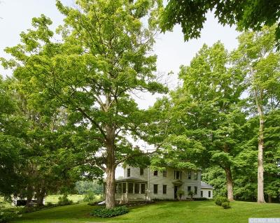 North Chatham NY Single Family Home For Sale: $895,000