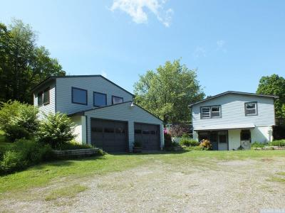 Ancram NY Single Family Home For Sale: $247,000