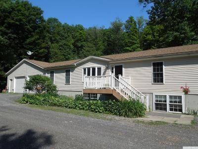 Canaan Single Family Home For Sale: 393 Maple Drive