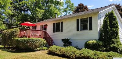 Copake Single Family Home For Sale: 106 Washington Road