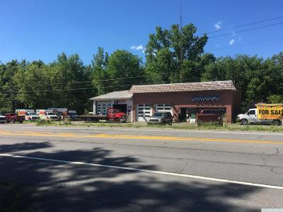 New Lebanon Commercial For Sale: 396 Us Route 20