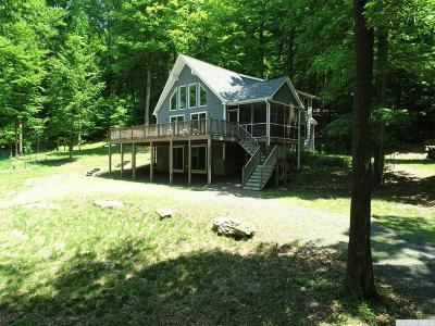 Copake Single Family Home For Sale: 2260 Stop 80 County Route 7