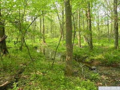 Dutchess County Residential Lots & Land For Sale: Milan Hill Road