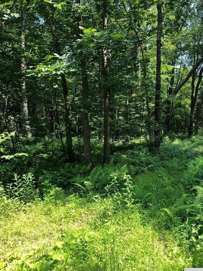 Copake Residential Lots & Land For Sale: Artford #10