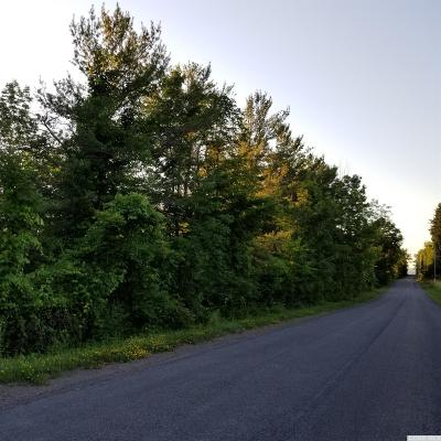 Greene County Residential Lots & Land For Sale: Strong Cornwallville Road