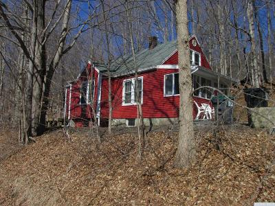 Chatham Single Family Home For Sale: 1 County Route 24