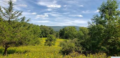 Copake Residential Lots & Land For Sale: Roeliff Meadow
