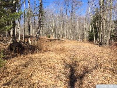 Jewett Residential Lots & Land For Sale: 2419 Route 296