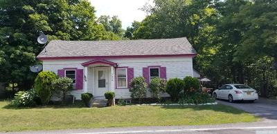 Albany County Single Family Home For Sale: 3604 Route 145