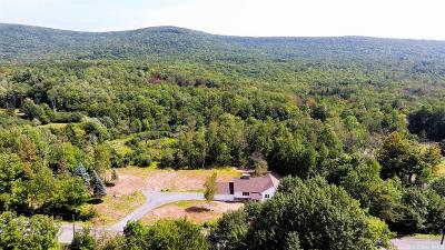 Windham Single Family Home For Sale: 746 County Route 21