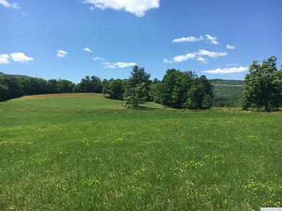 Albany County Residential Lots & Land For Sale: Cr 354