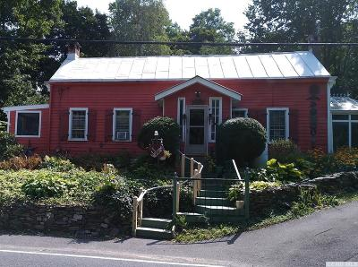 Dutchess County Single Family Home For Sale: 30 Spring Lake Road