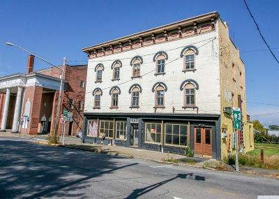 Hudson Commercial For Sale: 702 Columbia Street