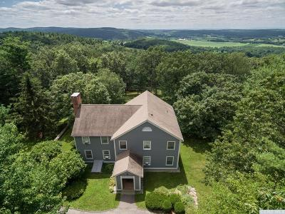 Dutchess County Single Family Home For Sale: 99 Bella Vista Road
