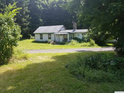 Ghent Single Family Home For Sale: 2217 State Route 66