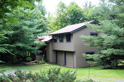 Windham NY Single Family Home For Sale: $325,000