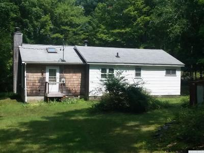Hillsdale NY Single Family Home For Sale: $142,000