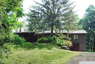 Dutchess County Single Family Home For Sale: 146 Guski Road