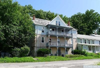 Greene County Multi Family Home For Sale: 92 Broad Street