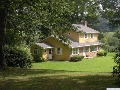 Columbia County Single Family Home For Sale: 86 Skyline Road