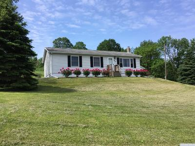 Albany County Single Family Home For Sale: 835 County Route 403