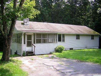 Catskill NY Single Family Home Accepted Offer: $109,000