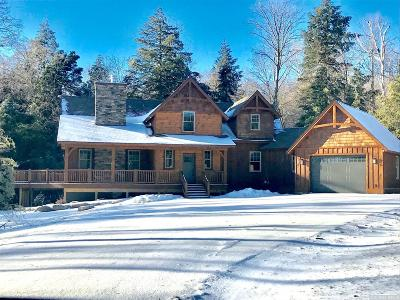 Windham NY Single Family Home For Sale: $729,000