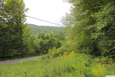 Lanesville NY Residential Lots & Land Accpt Offer Ok 2 Sho: $39,900