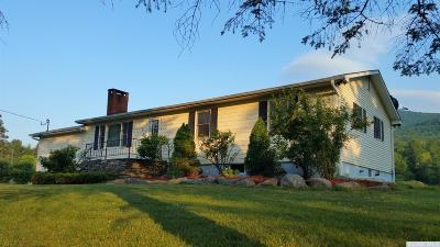 Windham NY Single Family Home For Sale: $219,000