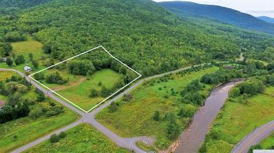 Jewett NY Residential Lots & Land Accepted Offer: $69,000