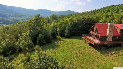 Greene County Single Family Home For Sale: 195 Overlook Drive