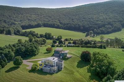 Columbia County Single Family Home For Sale: 45 Hi View Farm Road