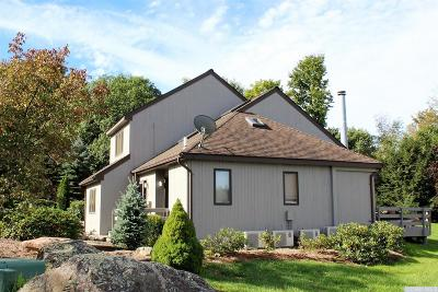 Windham NY Single Family Home For Sale: $425,000