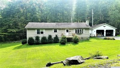 Greene County Single Family Home For Sale: 129 Condon Hollow Road
