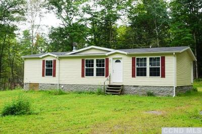 Greene County Single Family Home For Sale: 4398 Route 32