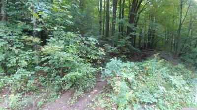 Hunter Residential Lots & Land For Sale: Meadow Brook Drive