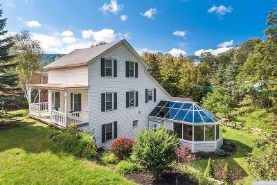 Windham Single Family Home For Sale: 17 Mitchell Hollow Road