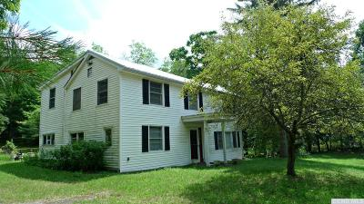 Dutchess County Single Family Home For Sale: 53 Stissing Mountain Drive