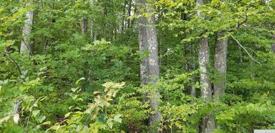 Copake Residential Lots & Land For Sale: Cat Track (Lot 77) Road